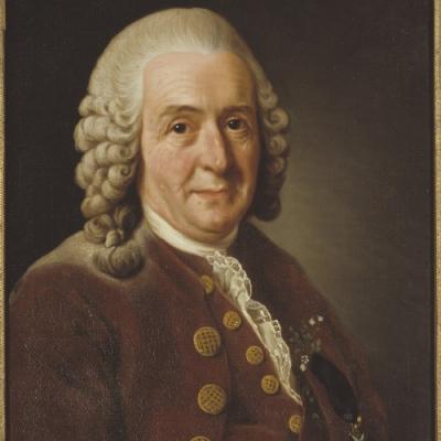 Pessoas influentes na Biologia - Carl Nilsson Linnaeus