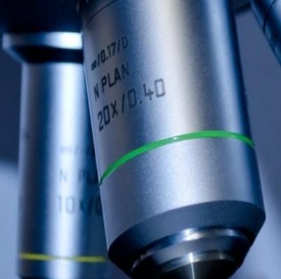 Cientistas substituem DNA