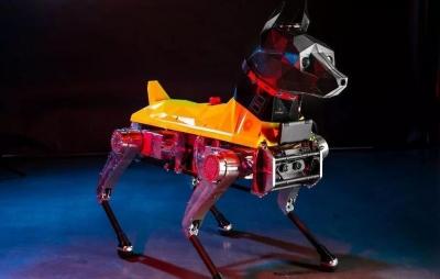 Cachorro-robô age por conta própria