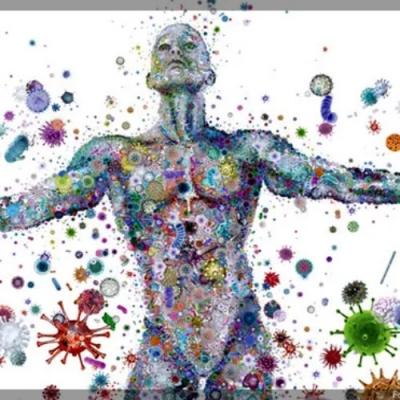 Microbioma humano: seu corpo é um ecossistema