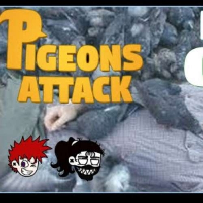 Live - Pigeon's Attack! Matando os pombo tudo!