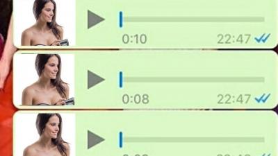 Os Áudios  do whatsapp #4