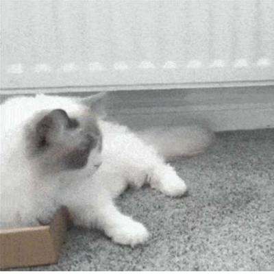 Quanto menor a caixa, melhor