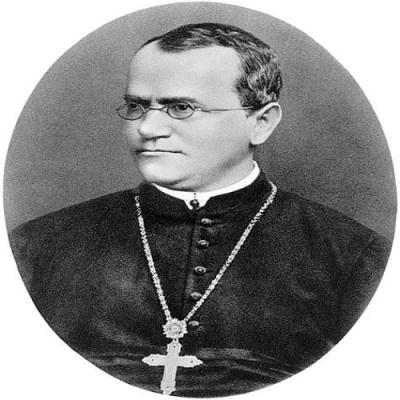 Pessoas influentes na Biologia - Gregor Mendel