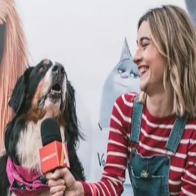 Pets 2 Pré estreia conta com fãs