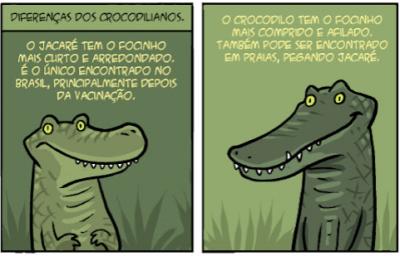 A diferença dos crocodilianos