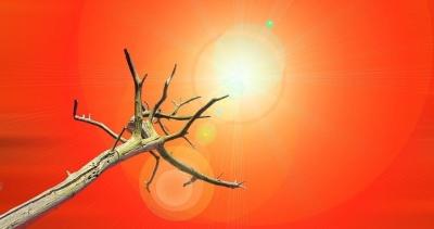 O sol pode mais responsável pelo aquecimento global do que o CO2