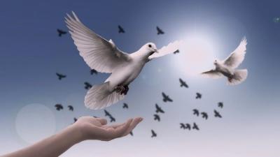 A paz verdadeira que somente Jesus oferece