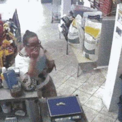 Passarinho ladrão