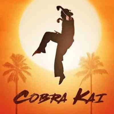Assistir Cobra Kai Online em HD Grátis