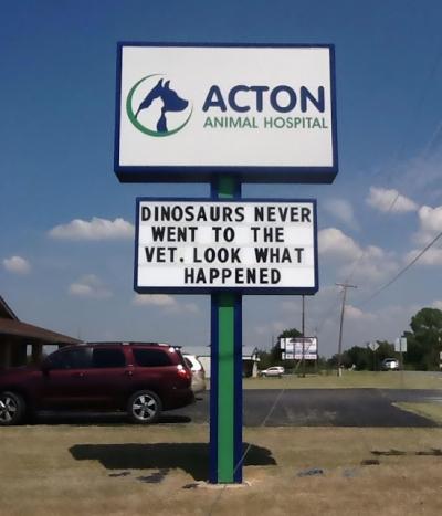 17 das piadas mais engraçadas feitas por veterinários