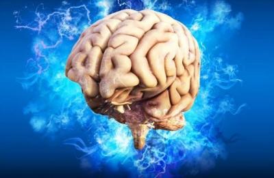 Vídeo mostra como cérebro se livra de neurônios mortos
