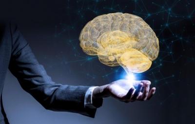 Cérebro nos impede de ver o quanto estamos errados