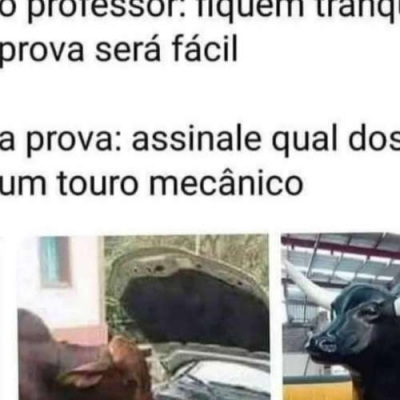 Paradoxo do touro