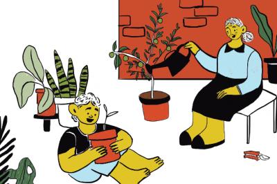 Mãos à horta: como cultivar ervas, temperos e outras plantas em casa