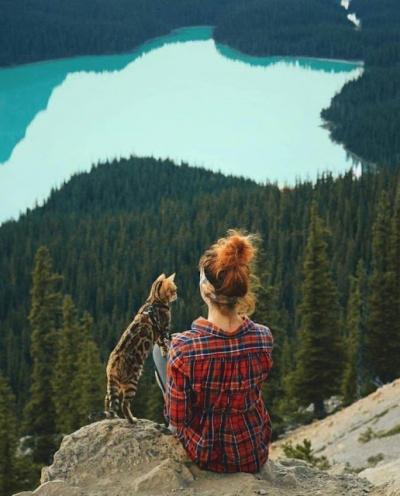 Tranquilidade, Paz de Espírito, Emoções, harmonia, humor em fotografias 32 fotos