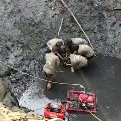 Resgate de crocodilo do pântano em lago na Índia