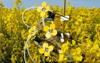 Artista cria flores robóticas para ajudar as abelhas; Confira o vídeo