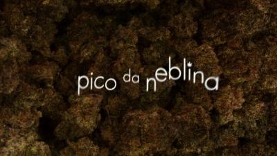 Pico da Neblina:Série brasileira da HBO recebe indicação em importante premiação