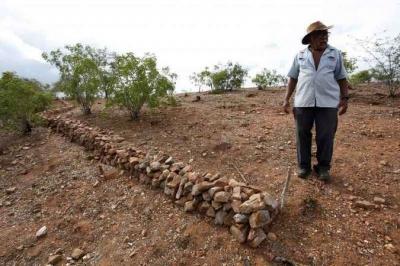 Desertificação cresce e ameaça terras do Nordeste, Minas e Espírito Santo
