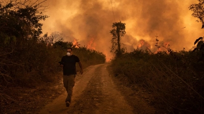 Área do Pantanal atingida por incêndio pode levar até 50 anos para se regenerar