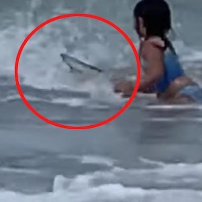 Garota de 6 anos é atacada por tubarão em praia do Havaí