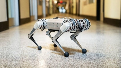 Confira tudo o que esse robozinho é capaz de fazer (com erros de gravação)