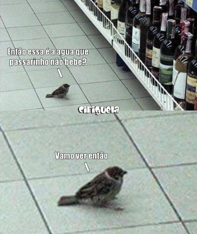A água que passarinho não bebe