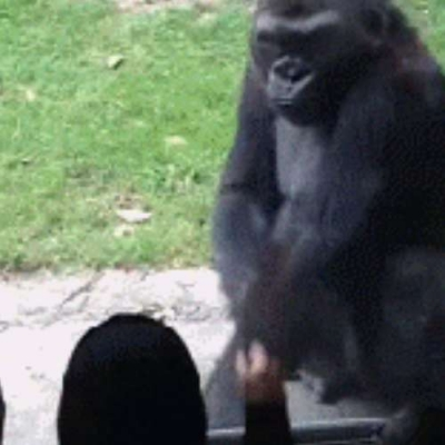 Ta me chamando pra brigar?