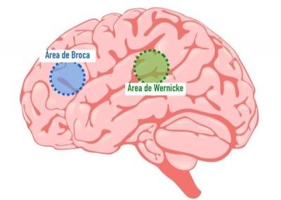 Sintomas das 7 principais IST's no Homem