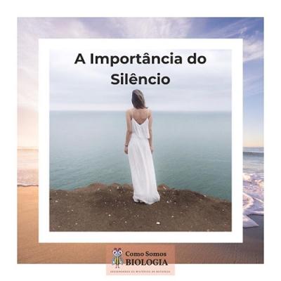 Qual é a importância do silêncio?