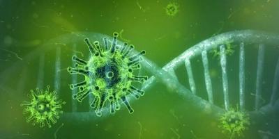 Descoberto tratamento capaz de neutralizar completamente o coronavirus