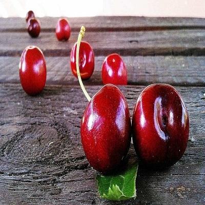 Saiba quatro frutas para uma pele perfeita, protegida e hidratada