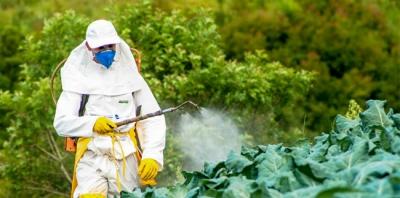Como Tirar Agrotóxico dos Alimentos