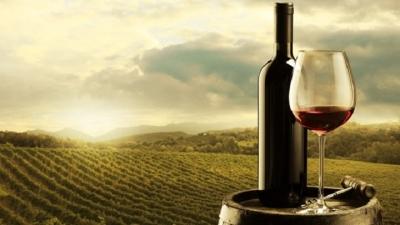 Vinhos brasileiros podem ser melhores para a saúde que os estrangeiros