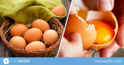 7 Benefícios do ovo para a saúde