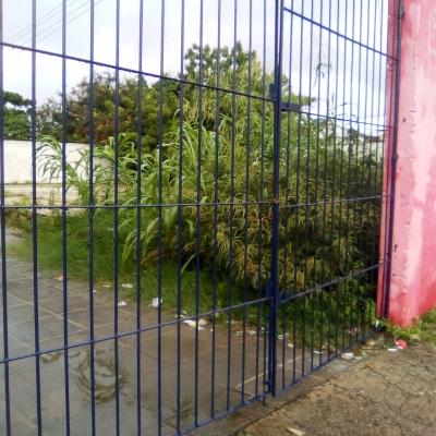 Entrada de escola tomada pelo mato