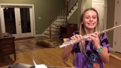 Esse cão odeia ou ama o som dessa flauta?
