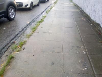 Lixo na calçada foi retirado (Antes e Depois)