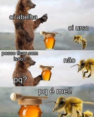 Porque o urso não pode ficar com mel?