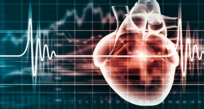 13 Tipos de Exames do Coração