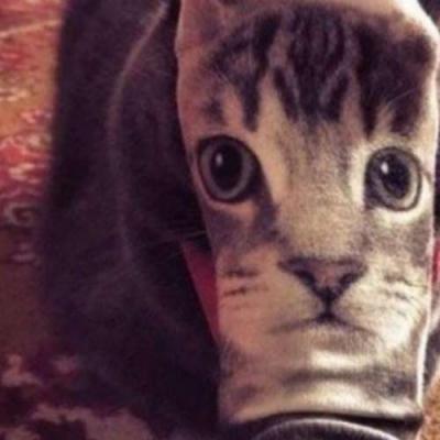Meia de gato