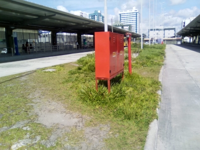 Terminal de ônibus tomada pelo mato