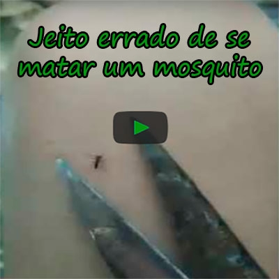 Jeito errado de se matar um mosquito