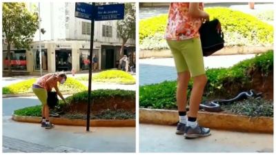 "Mulher leva cobra para ""passear"" no centro e viraliza"