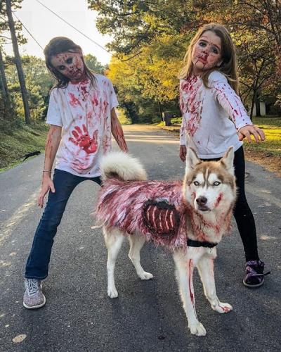 Fantasias incrivelmente criativas para Halloween #2