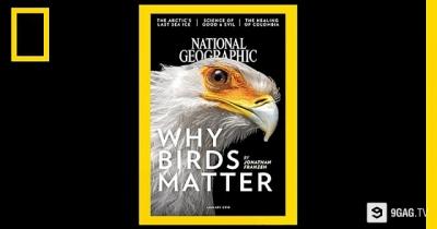 130 anos de National Geographic em 2 minutos