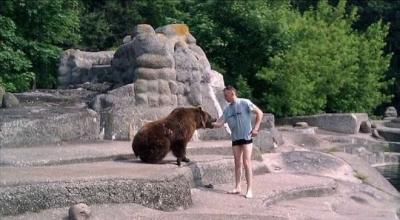 Homem invade cercado de ursa em zoológico e espanca animal depois de levar uma m