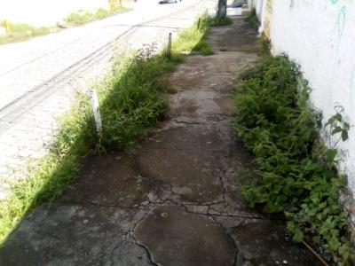 Rua tomada pelo mato e capim