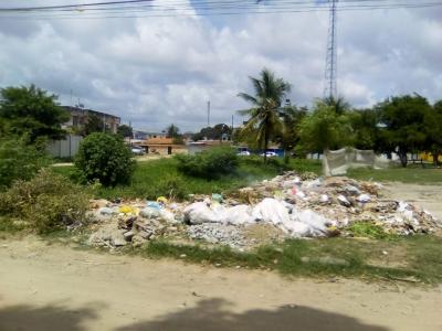 Canal cheio de mato e cercado por lixo